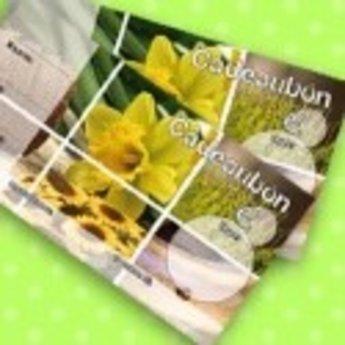 Cadeaubonnen bedrukt met narcis - voorjaar in full colour, genummerd. Verpakt per 50 stuks inclusief enveloppen.