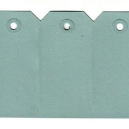 Labels 55x110 mm blauw            1000st