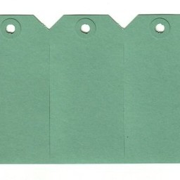 Labels 60x120 mm groen 1000st