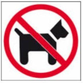 Apli APLI Signs - Nr. 11536 - Inside sign - No dogs - afmeting 114x114mm zelfklevendDeze pictogrammen kleven aan de voorzijde, dus op winkelruiten enz. aan te brengen.