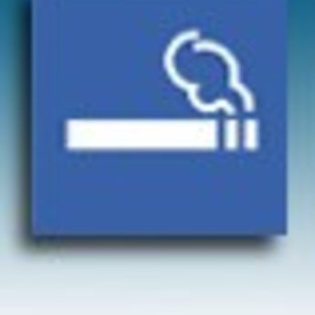 Apli APLI Signs - Nr. 11339 - Smoking permitted - afmeting 114x114mm zelfklevend