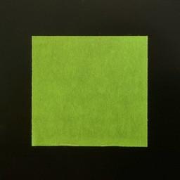 Etiket 2928 groen afneembaar