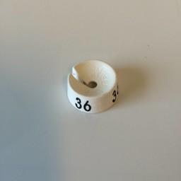 MB wit/zwart  36 voor op kledinghanger