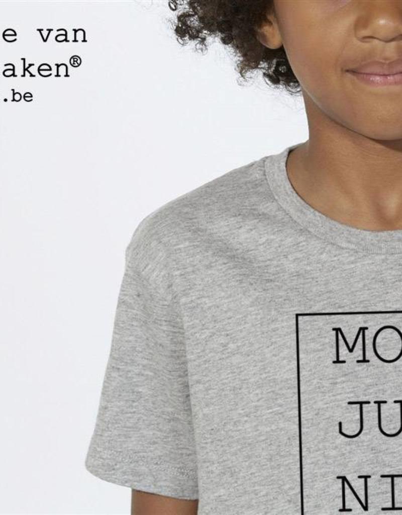 Departement Krijg de Kleren Moet Just Niks T-shirt Kids Grijs