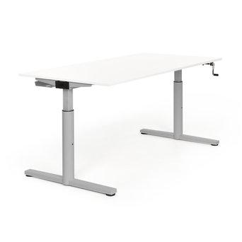 Gispen Refurbished Gispen TM Schreibtisch | Rahmen Grau
