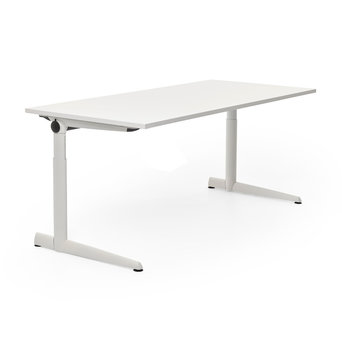 Ahrend @Home Refurbished Ahrend 500 desk sit / sit workstation
