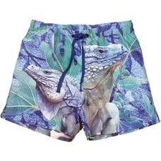 WILD shorts Iguana