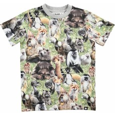 Molo shirt Hairy Animals