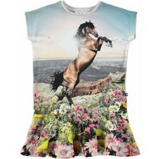 Molo shirt Mountain Horse