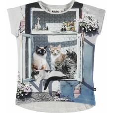 Molo shirt City Cats