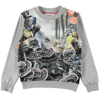 Molo Forest Squirrels shirt
