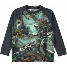 Molo shirt Lake Monsters ls