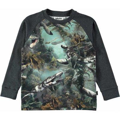 Molo shirt Lake Monsters ls