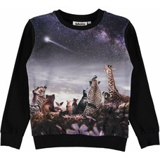 Molo shirt Wish Upon a Star