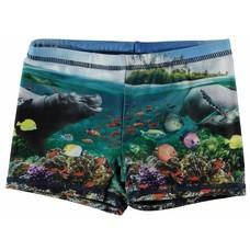 Molo swimsuit Imagine