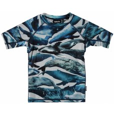 Molo zwemshirt Whales