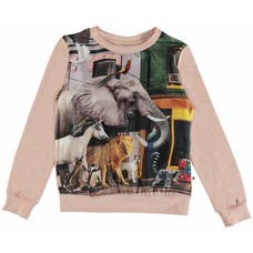 Molo shirt Animals of the World