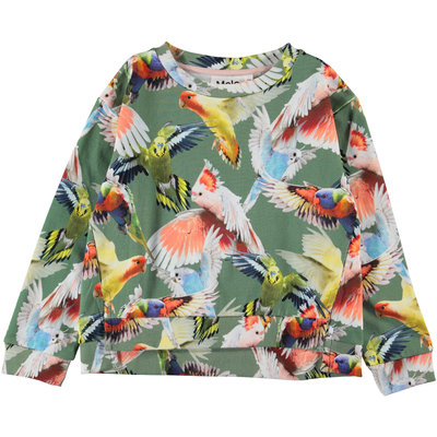 Molo sweater Budgies