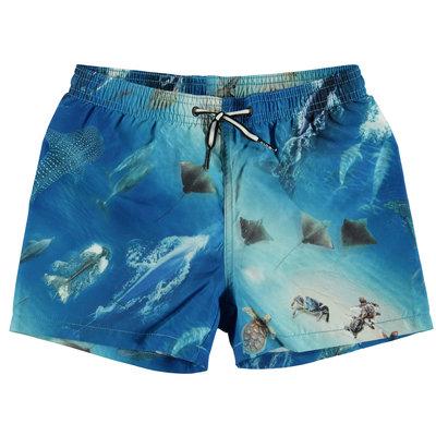 Molo zwemshort Above Ocean