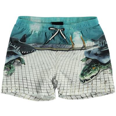Molo swimming shorts Pool Side