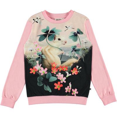 Molo shirt Lucky Clover