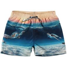 Molo Swim shorts Sea Turtle Sunset