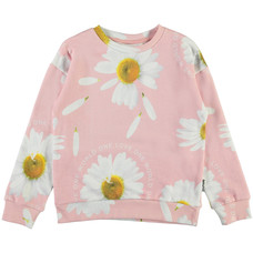 Molo sweater Giant Daisy
