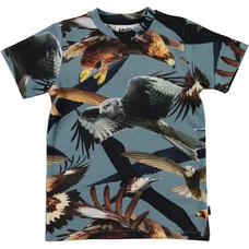 Molo shirt ss Birds