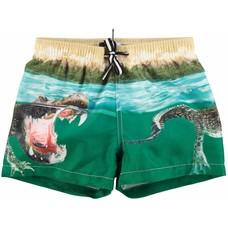 Molo shorts Crocodile