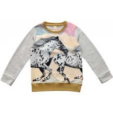 WILD sweater White Horse
