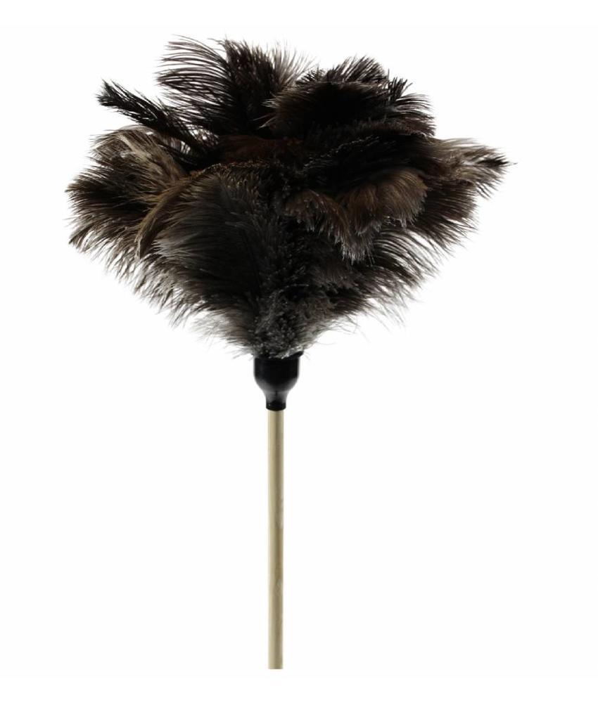 Struisvogel Plumeau op steel