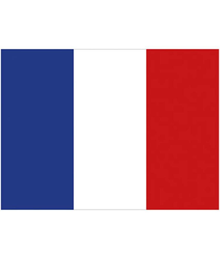 Vlag Frankrijk 90 x 150 cm