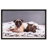 Schoonloopmat 40 x 60 cm -  Image Cat&Dog