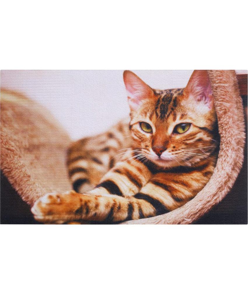 "Rubber Deurmat  Gallery ""Cat""  45 x 75 cm."