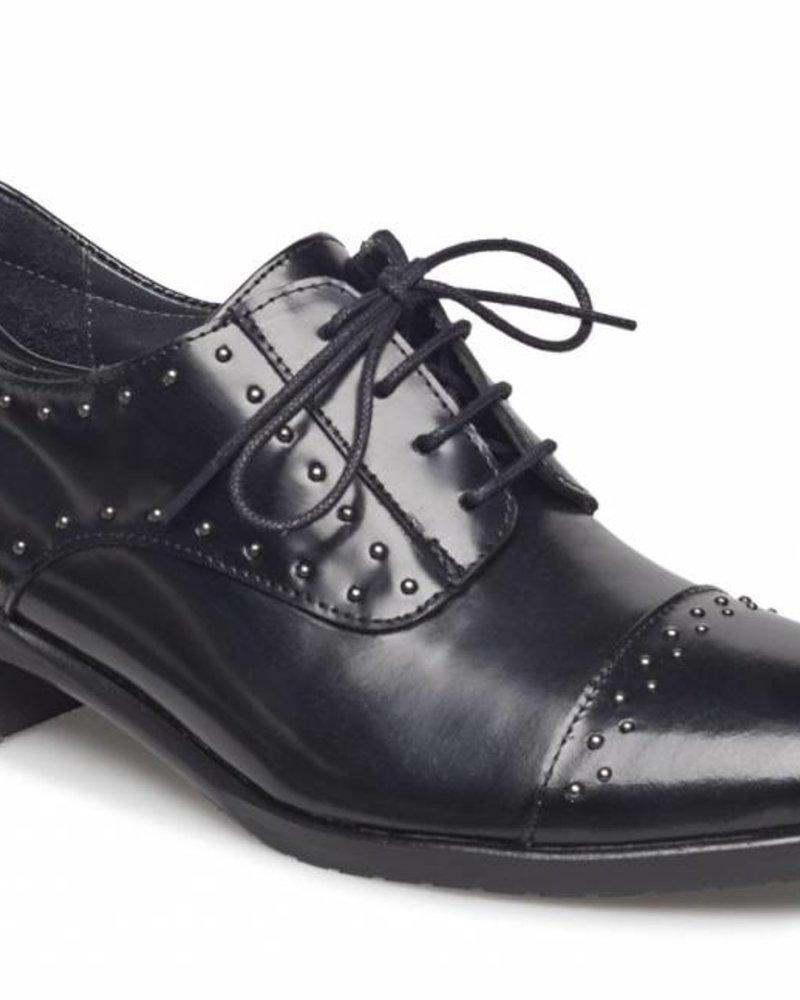 Angulus Classic Shoe Studs Black