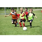 Soccer ABF Recreational Soccer:  Ages 5 -6 (Pee-Wees)