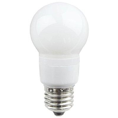 Showtec LED lamp met E27 fitting groen