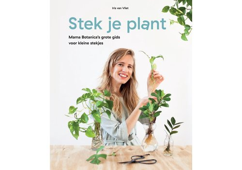 Stek je plant