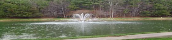 Otterbine Genesis drijvende fontein