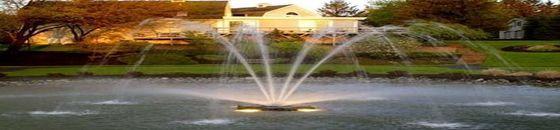 Otterbine Constellation drijvende fontein