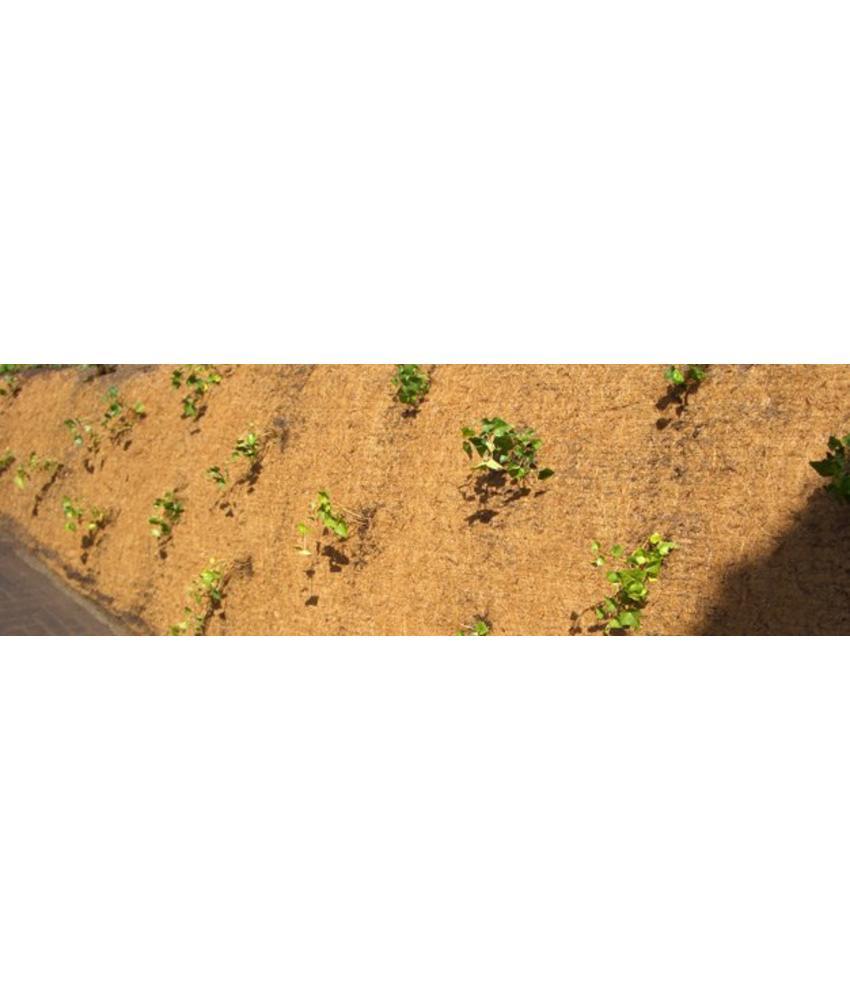DuPont Plantex Cocomat worteldoek | Prijs per M2 | Rollengte 22,5 meter