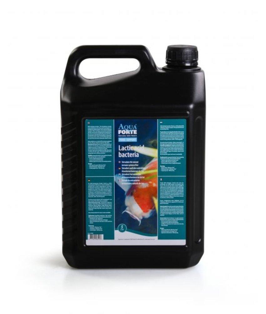 AquaForte Melkzuurhoudende Bacteriën 5 liter