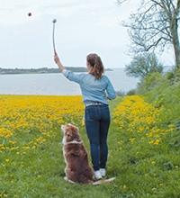 Hondenspeelgoed Online Kopen