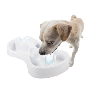 All For Paws Chill Out Ice Track & Thirst