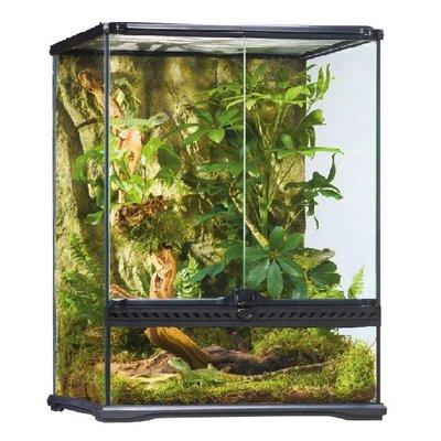 Exo Terra Glazen terrarium incl. achterwand 45x45x60cm