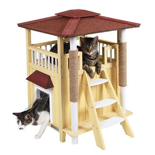 Kattenhuis