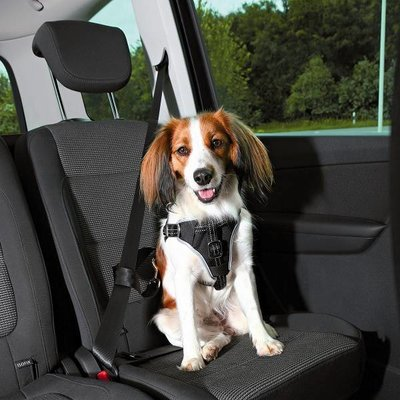 Trixie Auto Hondentuig Dog Protect