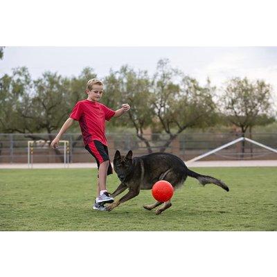Jolly Pets Honden Voetbal