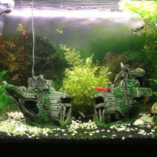 Aquarium Decoratie Schip