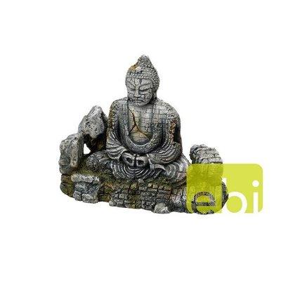 Aqua Della Boeddha L